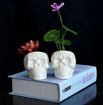 20 Macabre, Twisted, Unusual, Dark, Victorian, & Gothic Stocking Stuffers | Skull Succulent Planters | Christmas Shopping | www.MeandAnnabelLee.com