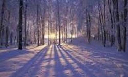 twilight winter