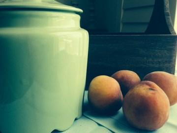peach orchard.2