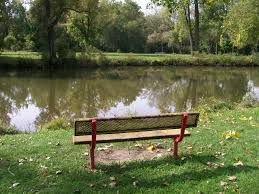bench on river1