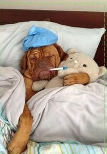 Under the Weather….