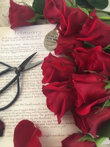 February and red roses