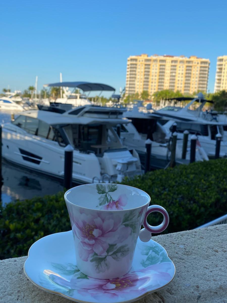 Marina on the Gulf