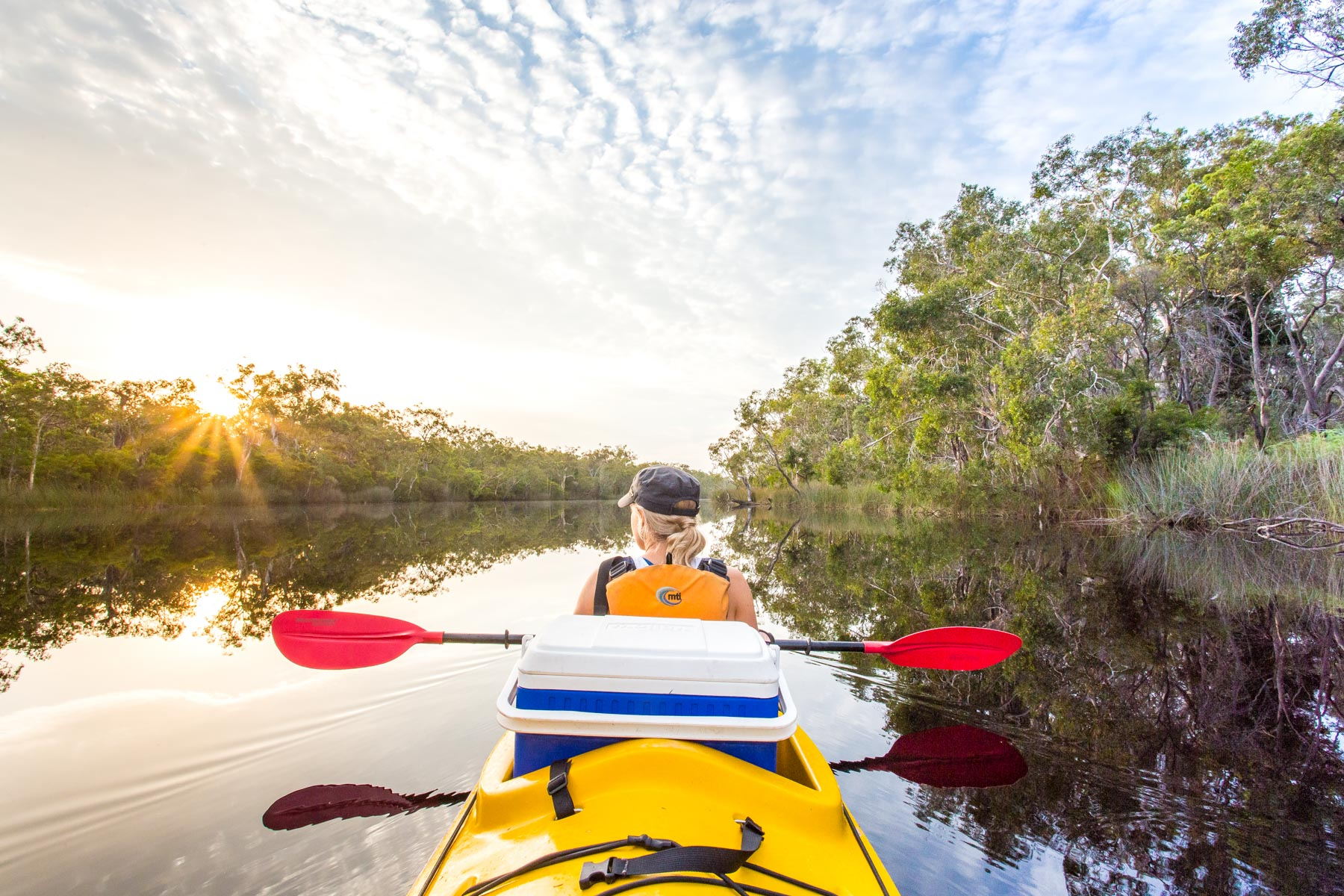 Healthy Travel Guide to Noosa Everglades Kayak