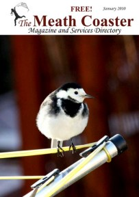 January 2010 Cover