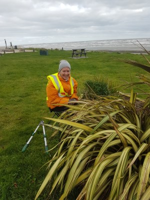 Laytown Tidy Towns Volunteer