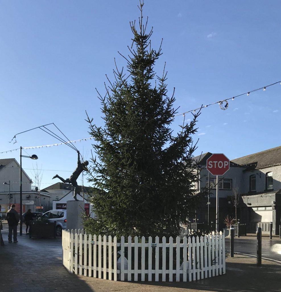 Bettystown Christmas Tree