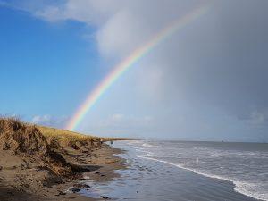SSN school rainbow