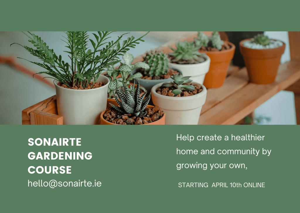 Sonairte Horticulture course