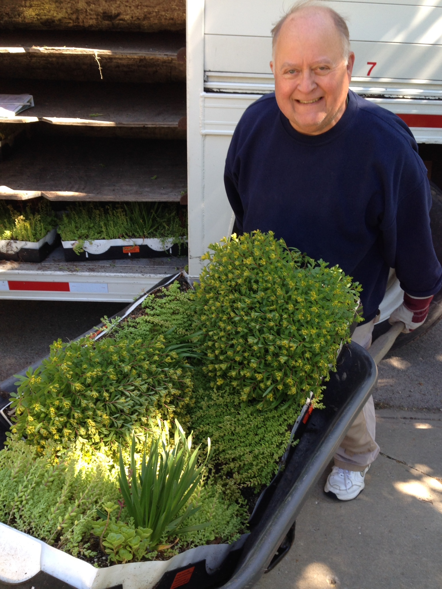 moving plant trays