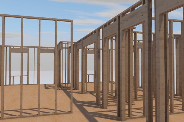 hope village project framing