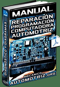 Manual de la ECU del Motor  Reparación, Reprogramación