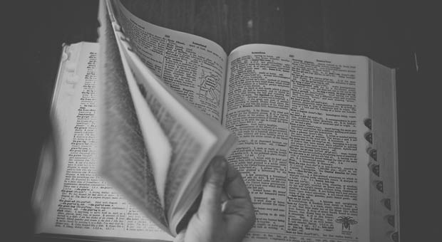 dictionnaire en ligne - article