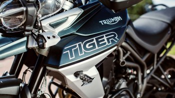 7J9A9317_GRD_Tiger_Style_1410x793