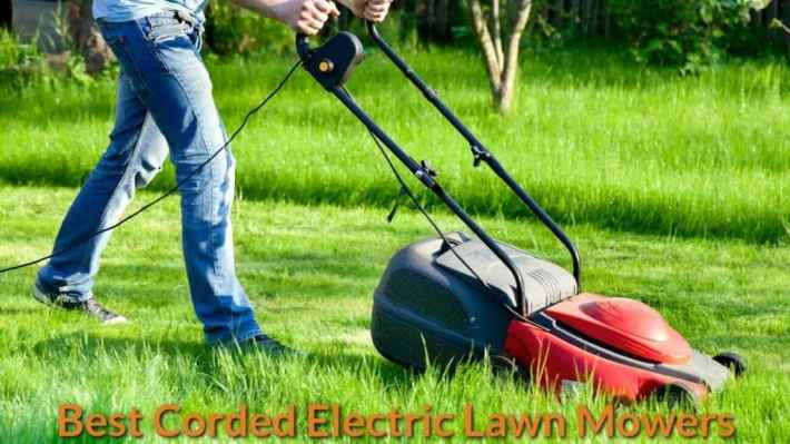 lawn mower cheap