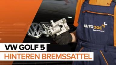Volkswagen Golf5 Bremssattel