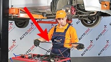 Mazda 2 DY Keilriemen