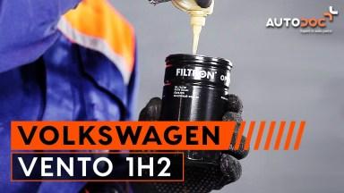 Volkswagen Vento 1H2 Motoröl und Ölfilter