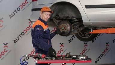 Volkswagen Sharan 7M Bremsen hinten
