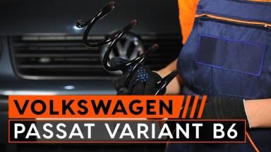 Volkswagen Passat B6 3C Fahrwerksfedern hinten