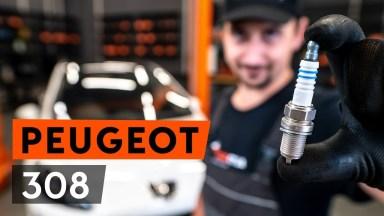 Peugeot 308 Zündkerzen