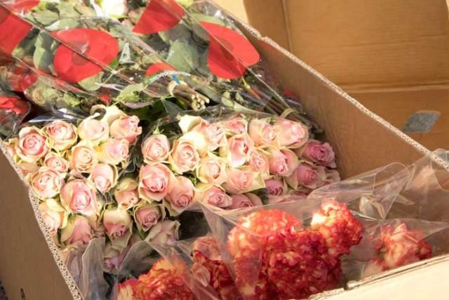 Verse bloemen voor zorgverleners en bewoners woonzorgcentrum Hof van Egmont
