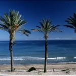 mil p beach