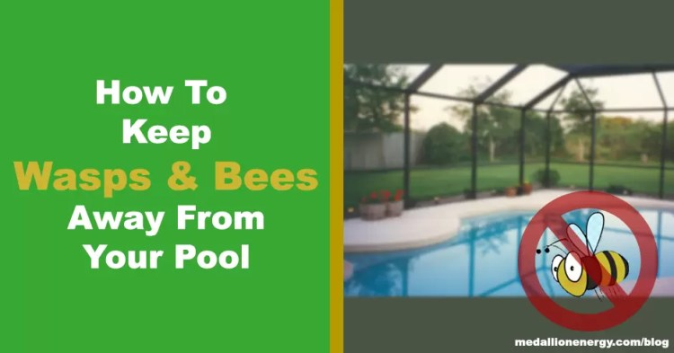 how to keep wasps and bees away from pool repel bees from swimming pool keep wasps away from pool keep bees away from pool
