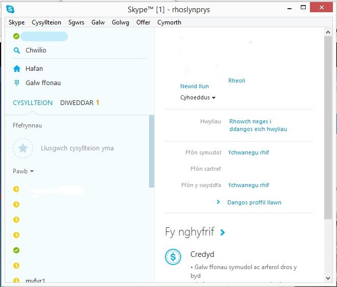 Rhyngwyneb Skype