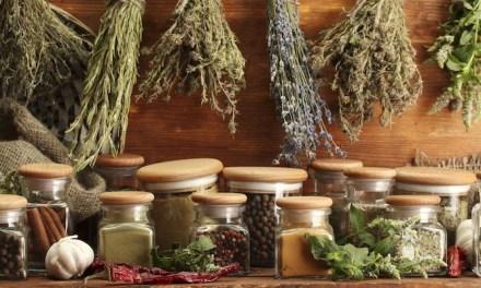 La phytothérapie et la médecine prophétique