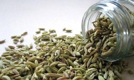 La consommation du sana (Séné) et du sanut (graines de fenouil)