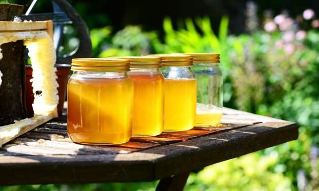 Le choix du miel