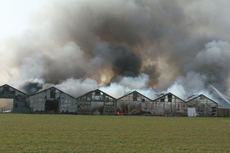 Enorme brand verwoest bedrijfsunits Nibbixwoud (Foto: Theo Annes)