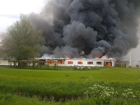 Enorme vuurzee verwoest bedrijfspand Wijdenes (Foto: NH Nieuws)