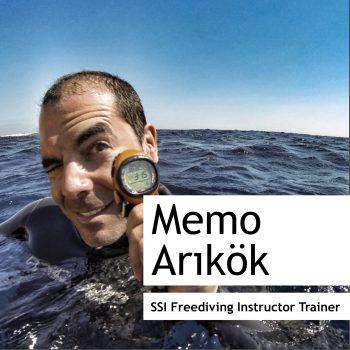 Mehmet Arıkök