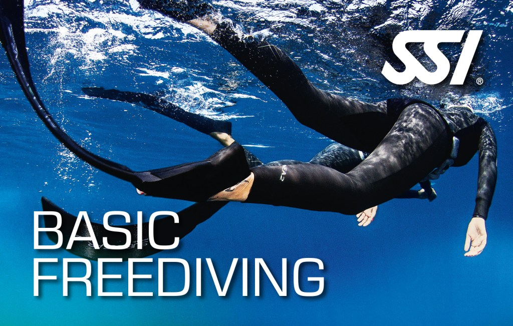 SSI Basic Freediving