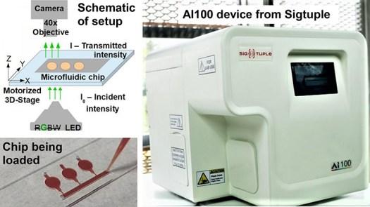 Microfluidics and AI Microscopy for Hemoglobin Measurements 2