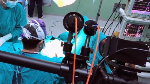 Mantis Shrimp-Inspired Camera to Detect Tumors During Surgery 6