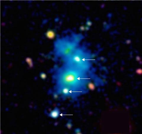 Immagine della regione dello spazio occupata dal quartetto di quasar. I quattro quasar sono indicati da frecce e sono immersi in una nebulosa gigante di gas denso e freddo visibile nell'immagine come una nebbiolina azzurra. La nebulosa ha un'estensione di un milione di anni luce, e questi oggetti sono così distanti da noi che la loro luce ha impiegato quasi 10 miliardi di anni per raggiungere i telescopi sulla Terra. Questa immagine a falsi colori si basa su osservazioni effettuate con il telescopio Keck da 10m sulla sommità del Mauna Kea nelle Hawaii. Crediti: Arrigoni-Battaia e Hennawi, MPIA