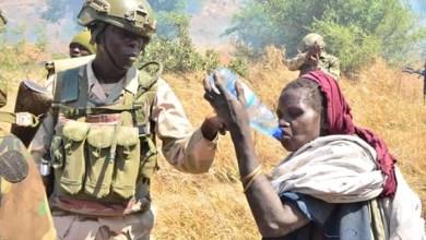 Photo of Nigeria Army have continued execute its mandate professionally-Buratai