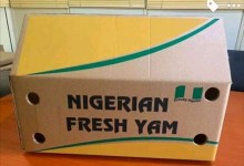 Photo of Next level: Nigeria commences export of yams to U.S markets