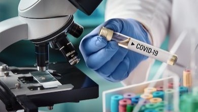 Photo of Coronavirus may become endemic – WHO