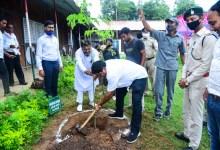 Photo of Chhattisgarh to tackle malnutrition through moringa