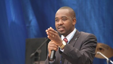 Photo of Zimbabwe's by-elections a litmus test for Chamisa