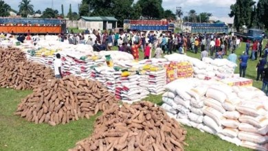 Photo of Looting: ICPC to investigate rationale behind storage of palliative