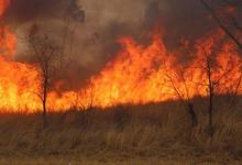 Photo of Veld fires destroy 684 070.22 hectares of land in Zimbabwe since July