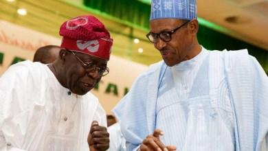 Photo of At 78: Support Buhari's efforts – Tinubu urges Nigerians