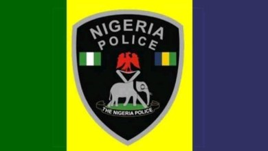 Photo of By-election: Police restricts movement in Lagos LGs on Dec 5