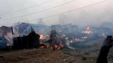 Photo of Nigeria: Sasa: Amnesty condemns attacks on northerners in Ibadan