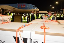 Photo of COVID-19: South Africa to distribute 80,000 doses of J&J vaccine